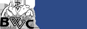 Blue Valley Vet Logo